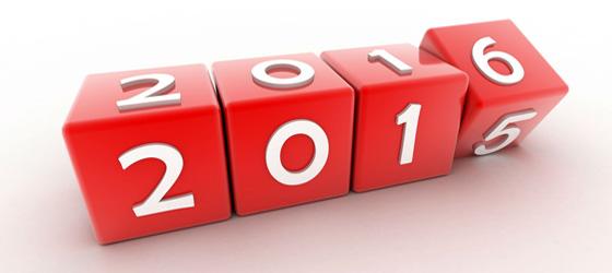 Bonne Année / Happy New Year 2016