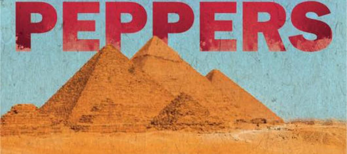 Concert des RHCP le 15.03.2019 en Égypte